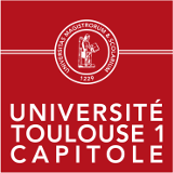 Toulouse University Capitole